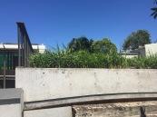 planting platform